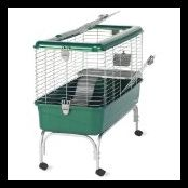 Guinea Pig Cage On Wheels picture-2