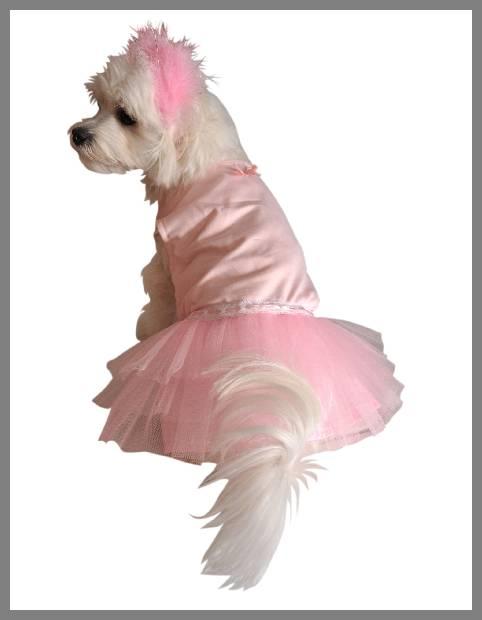 Dog tutu dress image